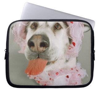 Malamute Dog Wearing a Tutu and Sticking Out Laptop Sleeve