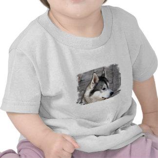 Malamute Photo Baby T-Shirt