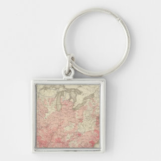 Malarial Deaths, Statistical US Lithograph Key Ring