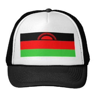 Malawi country long flag nation symbol republic cap