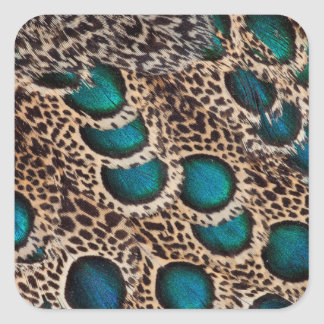 Malay Peacock-pheasant feathers Square Sticker