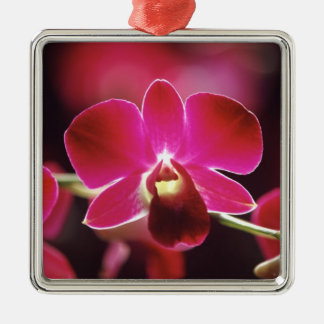 Malaysia, Orchid Christmas Ornament