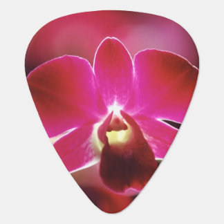 Malaysia, Orchid Guitar Pick
