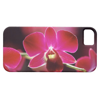 Malaysia, Orchid iPhone 5 Case