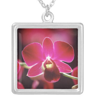Malaysia, Orchid Silver Plated Necklace