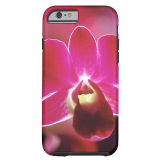 Malaysia, Orchid Tough iPhone 6 Case