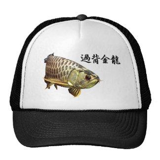 Malaysian Golden Arowana メッシュ帽子