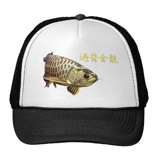 Malaysian Golden Arowana Mesh Hats