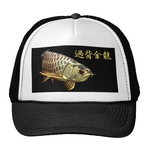 Malaysian Golden Arowana Mesh Hat