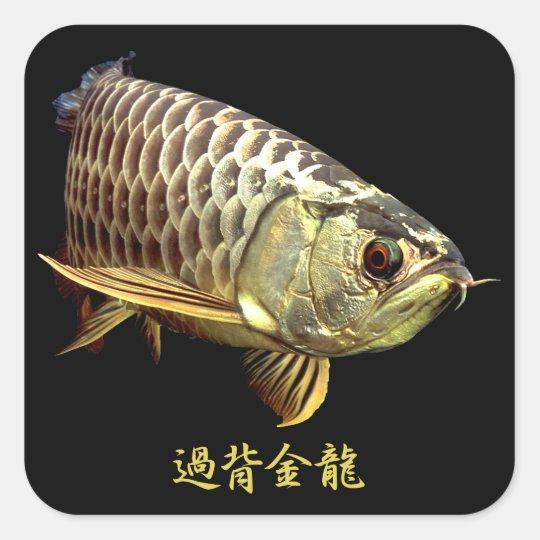 Malaysian Golden Arowana Square Sticker