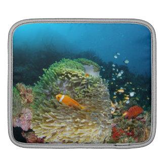 Maldives Anemone fish swimming underwater iPad Sleeve