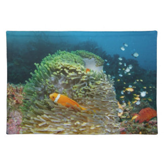 Maldives Anemone fish swimming underwater Placemat