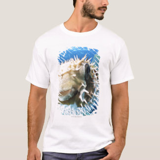 Maldives Islands T-Shirt