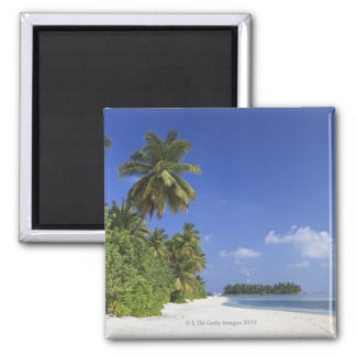 Maldives, Meemu Atoll, Medhufushi Island Magnet