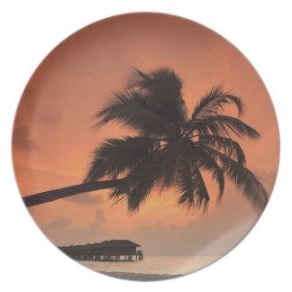 Maldives, Meemu Atoll, Medhufushi Island, Plate