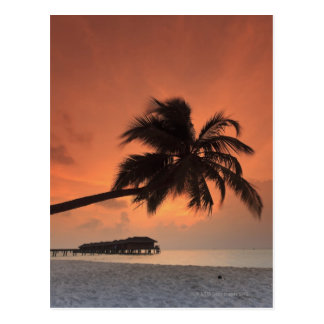 Maldives, Meemu Atoll, Medhufushi Island, Postcard