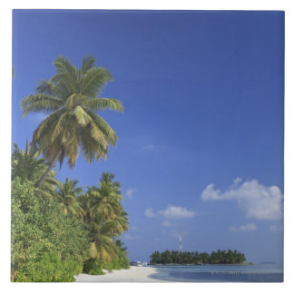 Maldives, Meemu Atoll, Medhufushi Island Tile