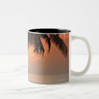 Maldives, Meemu Atoll, Medhufushi Island, Two-Tone Coffee Mug