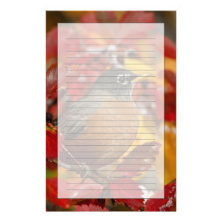 Male American Robin in Black Hawthorn 2 Stationery