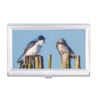 Male and female Tree Swallow Business Card Holder