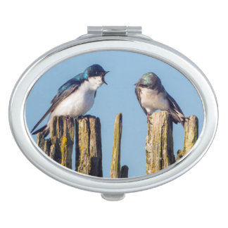 Male and female Tree Swallow Compact Mirror