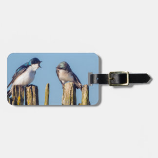 Male and female Tree Swallow Luggage Tag