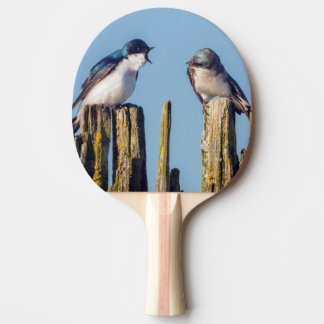 Male and female Tree Swallow Ping Pong Paddle