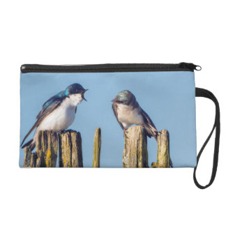 Male and female Tree Swallow Wristlet