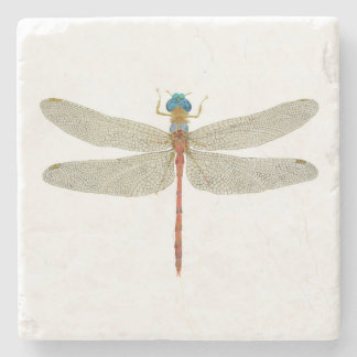 Male Blue-Faced Meadowhawk Dragonfly Coaster Stone Beverage Coaster