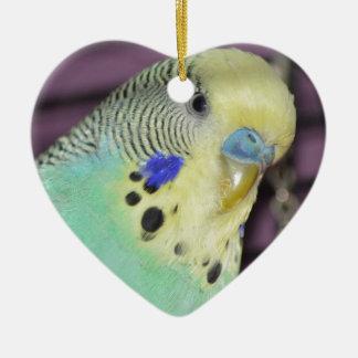 Male Budgie/ Parakeet Ceramic Heart Decoration