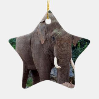 Male bull elephant christmas ornament