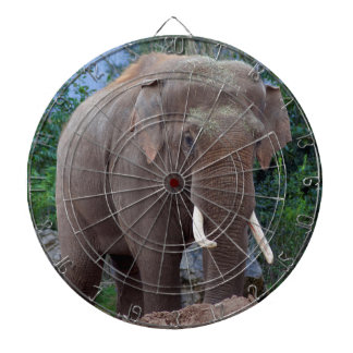 Male bull elephant dartboard