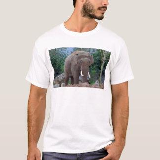 Male bull elephant T-Shirt