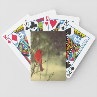 Male Cardinal Bicycle Playing Cards