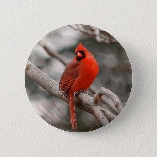 Male Cardinal Button