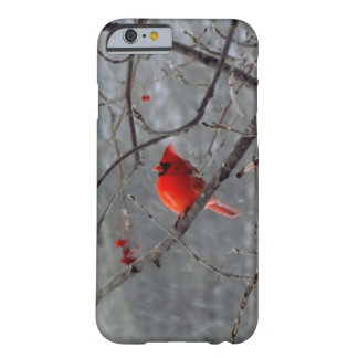 Male cardinal iPhone 6 case Barely There iPhone 6 Case