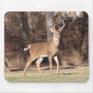 Male Deer Mouse Mat