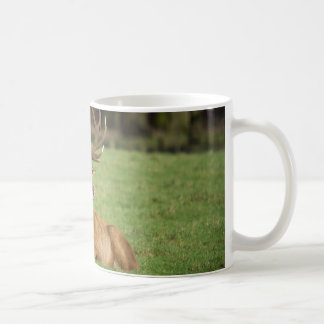 Male deer stag coffee mug