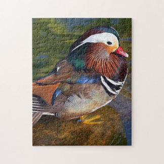 Male Duck Jigsaw Puzzle