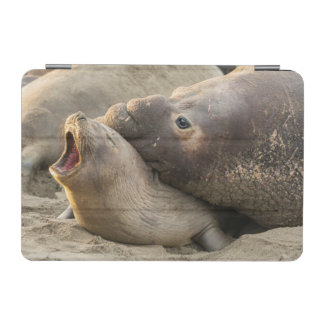 Male elephant seal gives love bite to female iPad mini cover