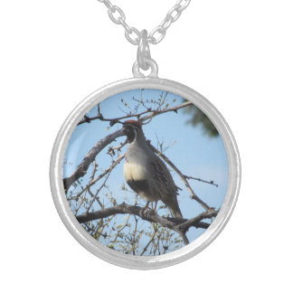 Male Gambel's Quail Silver Plated Necklace Round Pendant Necklace