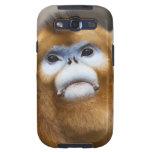 Male Golden Monkey Pygathrix roxellana, portrait Samsung Galaxy SIII Cover