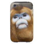 Male Golden Monkey Pygathrix roxellana, portrait iPhone 3 Tough Cases