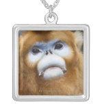 Male Golden Monkey Pygathrix roxellana, portrait Square Pendant Necklace