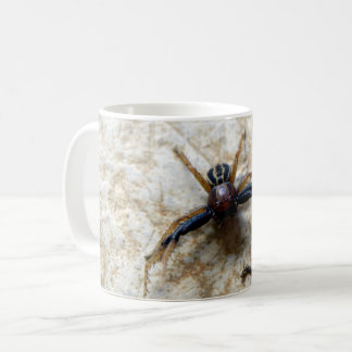 Male Ground Crab Spider Bug Mug