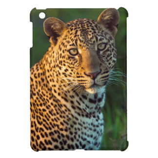 Male Leopard (Panthera Pardus) Full-Grown Cub Case For The iPad Mini