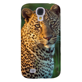 Male Leopard (Panthera Pardus) Full-Grown Cub Galaxy S4 Case