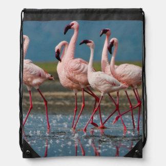 Male Lesser Flamingos (Phoenicopterus Minor) Drawstring Bag