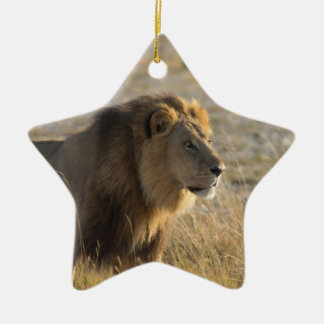 MALE LION 14  BOTSWANA CHRISTMAS ORNAMENT