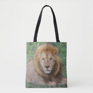 Male Lion Lying Down Tote Bag